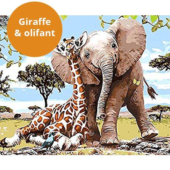 Giraffe-schilderen-met-nummers