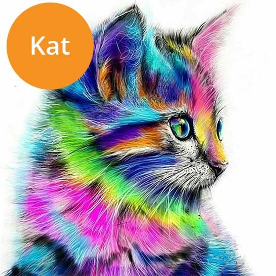 Kat-paint-by-numbers