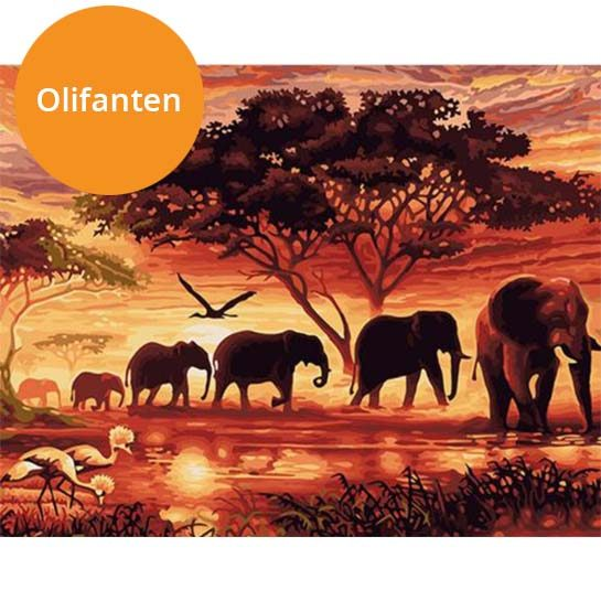 Olifanten-paint-by-numbers
