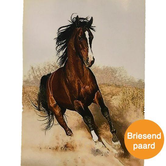 briesend paard