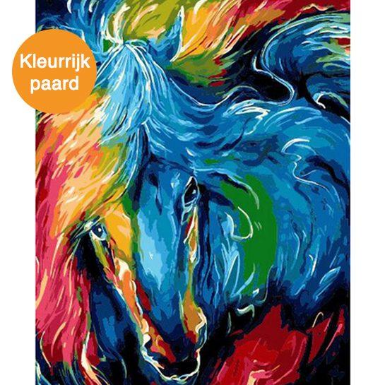 kleurrijk paard