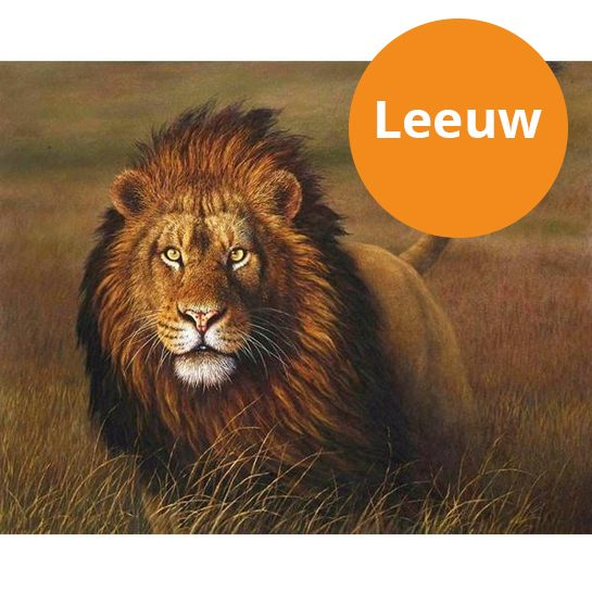 leeuw-paint-by-numbers