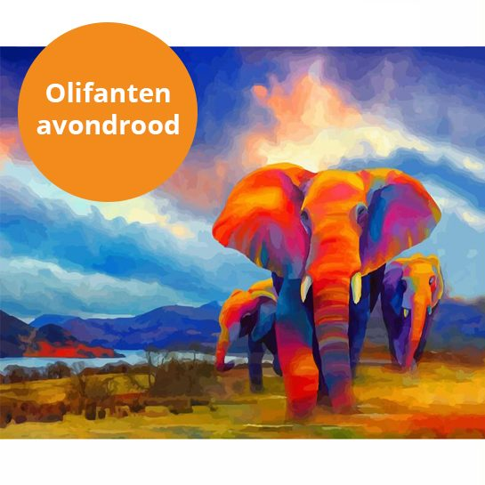 olifanten in avondrood