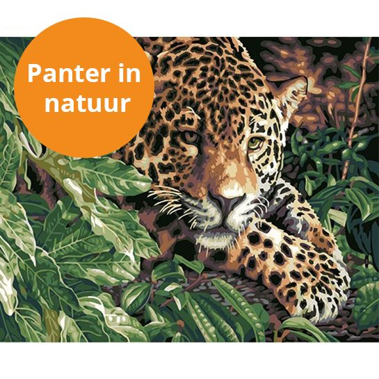 panter in natuur