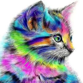 Kat-schilderen-op-nummers