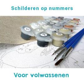 Schilderen Op Nummers Plaatje