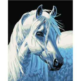 Wit Paard Schilderen Op Nummers
