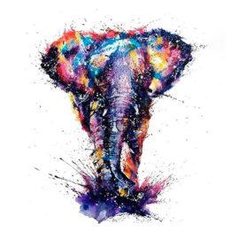 Explosive Elephant