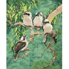 4 Vogels Schilderen Op Nummers