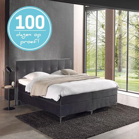 Troy 100 Dagen