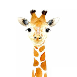 Serie Babyzoet Giraf Schilderen Op Nummers