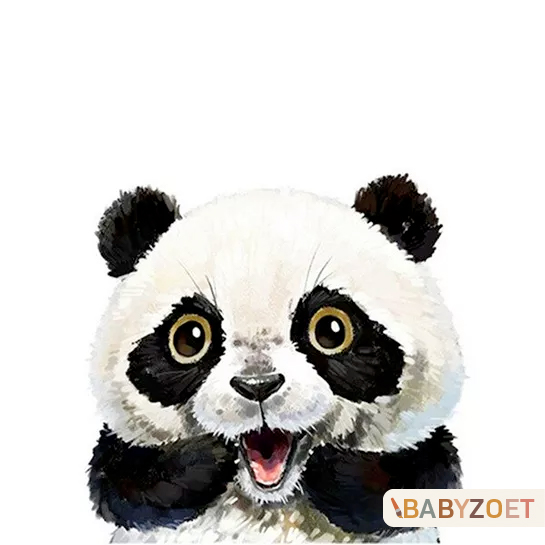 Panda Babyzoet