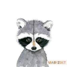 Wasbeer Babyzoet