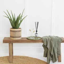 Kunstplant Aloe Vera 1