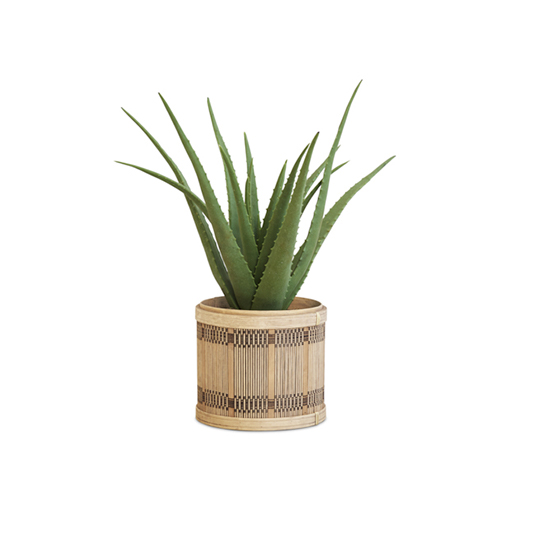 Kunstplant Aloe Vera 2
