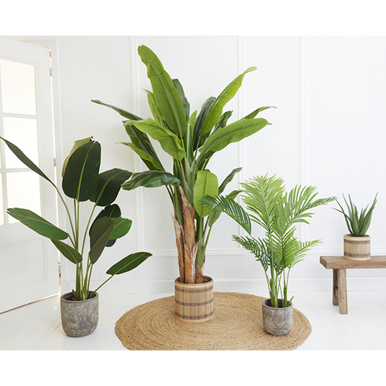 Kunstplant Aloe Vera 4
