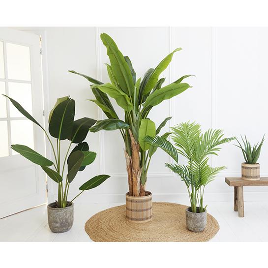 Kunstplant Bananenplant 1