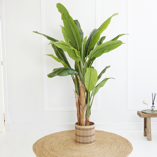 Kunstplant Bananenplant 2
