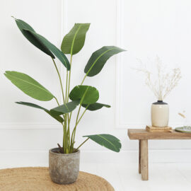 Kunstplant Strelitzia 1