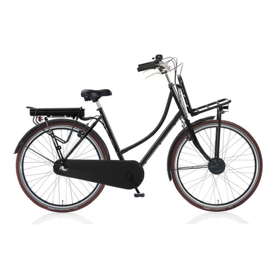 E Bike Transporter Cargo Met Shimano Nexus