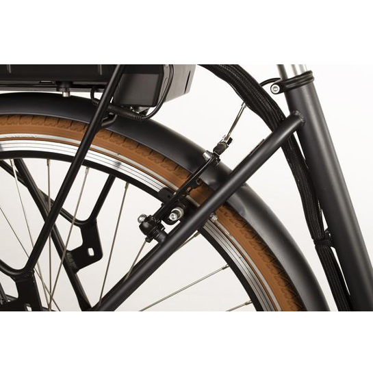 E Bike Transporter Cargo Met Shimano Nexus3
