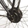 E Bike Transporter Cargo Met Shimano Nexus4
