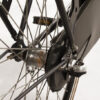 E Bike Transporter Cargo Met Shimano Nexus5