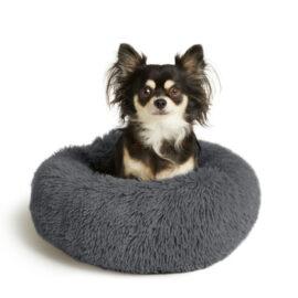 Hondenmand1