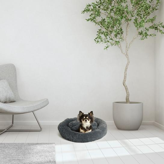 Hondenmand5