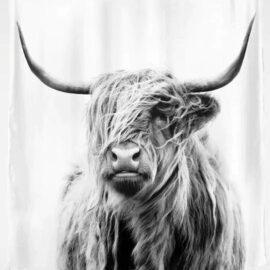 Douchegordijn Schotse Hooglander