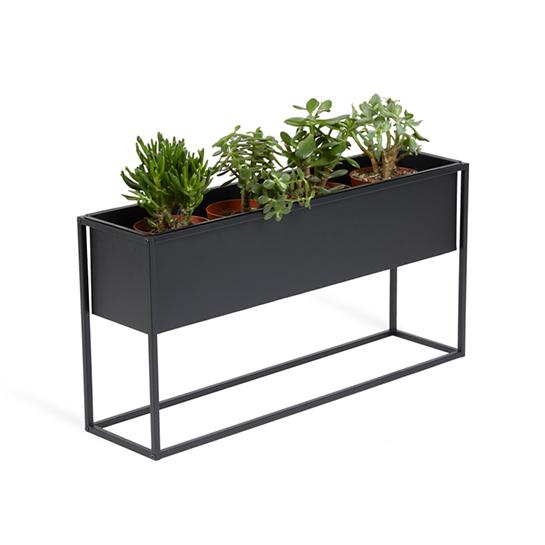 Plantenbak Rosemary4