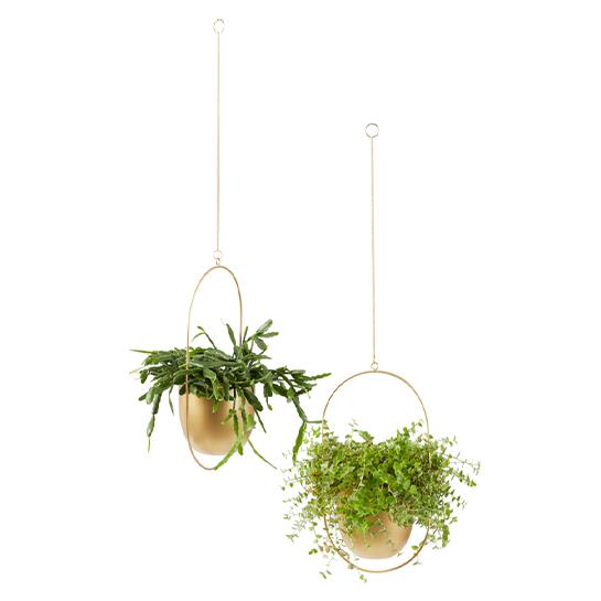 Lifa Living Plantenhanger Tess Brons