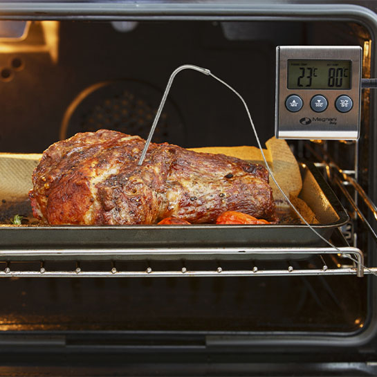 Vleesthermometer Met Timer Demo 1